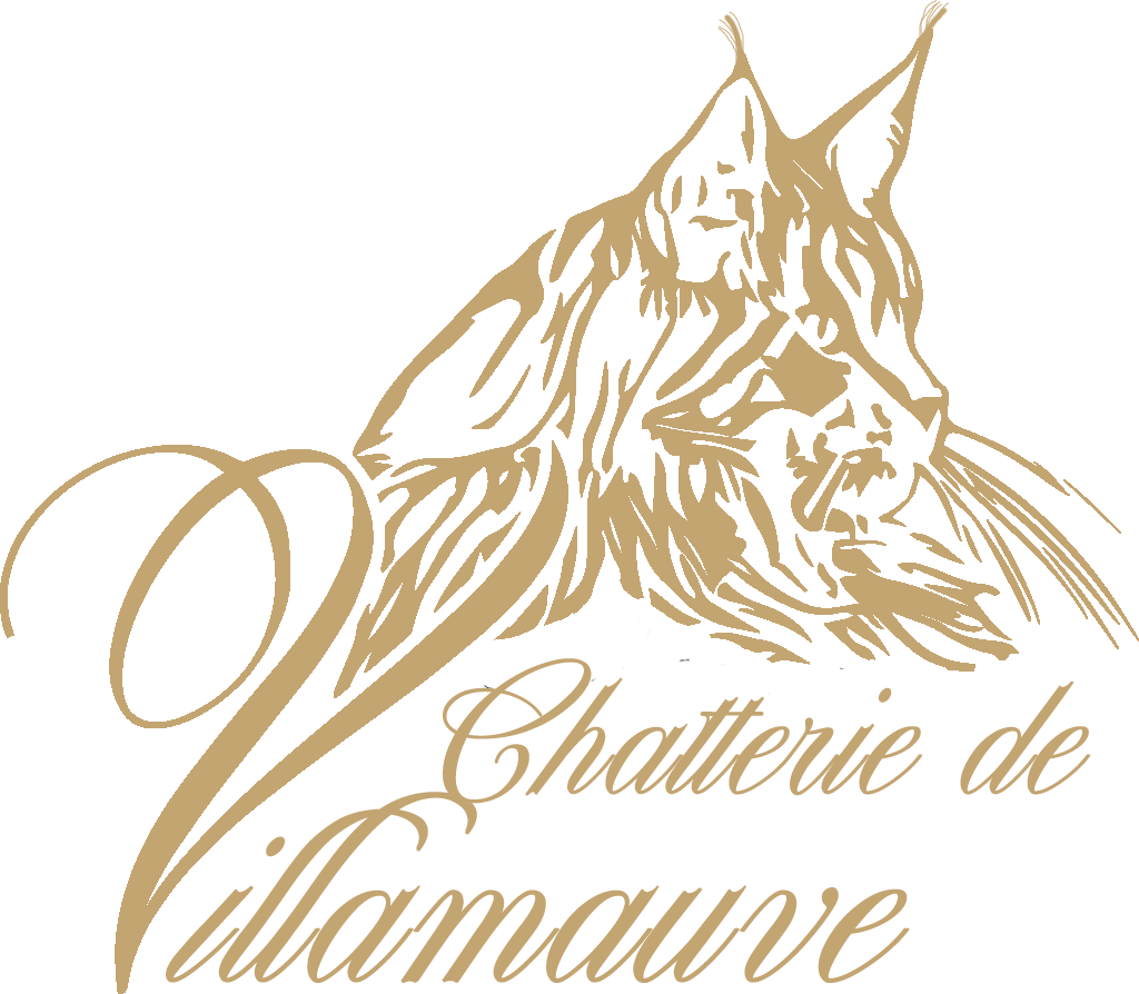 Chatterie de Villamauve